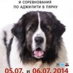 Международные выставки собак