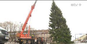 Украшать елку будут на следующей неделе. Фото: ERR