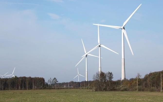 Тендер на продажу земли под парк ветрогенераторов в Тоотси организует RMK